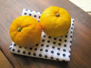 C7-2- citron - a